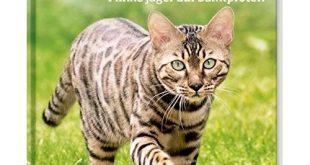 Katzen Kinderbuch Test