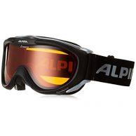 Skibrille Test