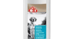 Hunde Shampoo Test