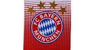 Bayern Badetuch Test