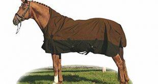 Pferdedecke Test