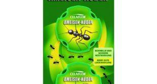 Ameisen-Köder Test