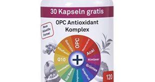 Antioxidantien Resveratrol Test