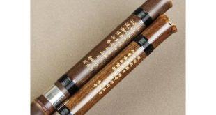 Shakuhachi Flöte Test
